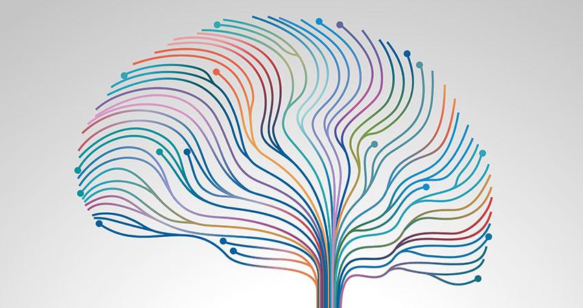Maladie de Parkinson et alimentation