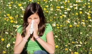 rhume des foins et allergies